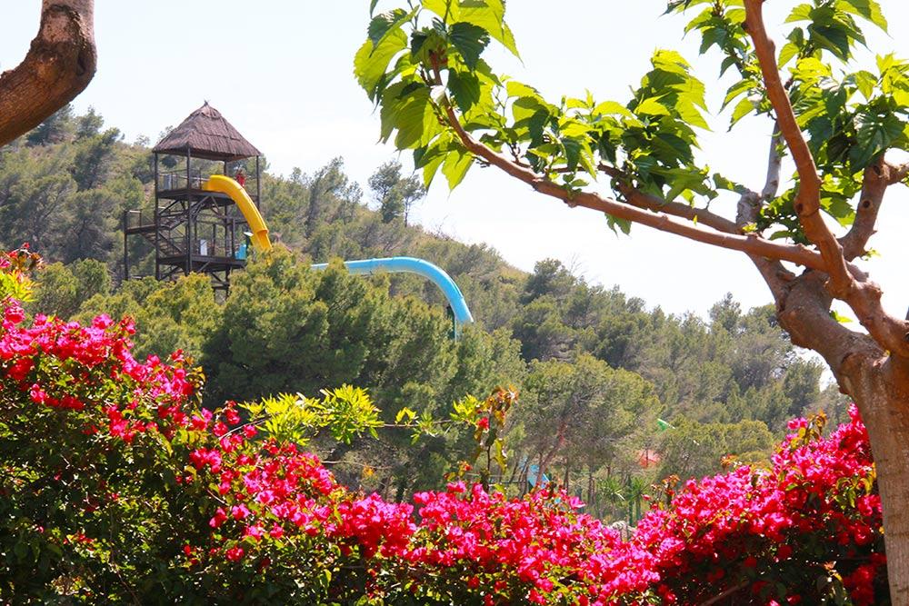 Three Routes, Three Ways to Enjoy the Attractions at Aqualandia